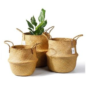 Seagrass Plant Basket Set of 3 - Hand Woven